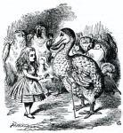 Alice Birds