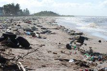 beach litter polution