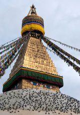 Buddhist Stupa Tibet