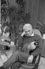 French Philosopher Jacques Derrida Holding His Cat