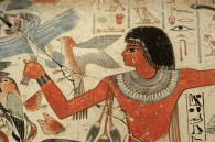 egyptian wall birds