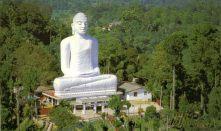 Giant Buddha Indian Temple