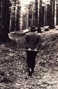 Heidegger walking in the woods
