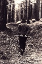 Heidegger walking in the woods