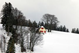 Heidegger's cabin in the snow
