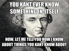 Kant In-Itself meme