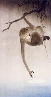 Monkey reflection moon painting