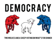 sheep-democracy