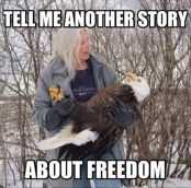 tell me another story about freedom bald eagle