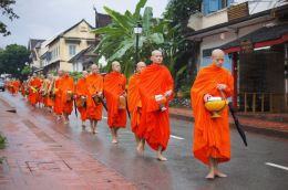 Theravada Monks Walking