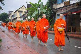 Theravada Monks Walking