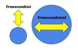 Transcendent & Transcendental