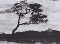 Van Gogh Tree Whipped by the Wind