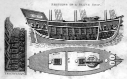 Walsh-cross-section-of-slave-ship-1830