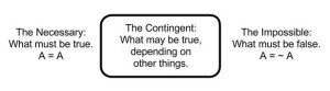 wittgenstein-the-contingent
