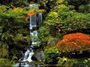 Zen Waterfall