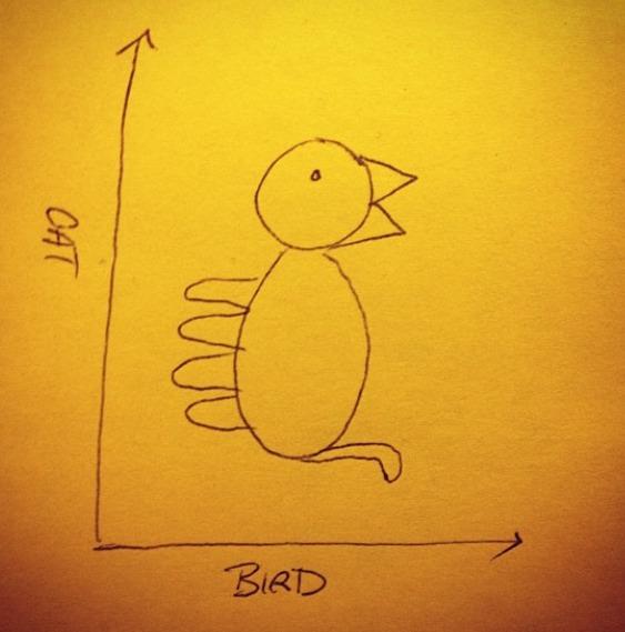 Cat/Bird Graph