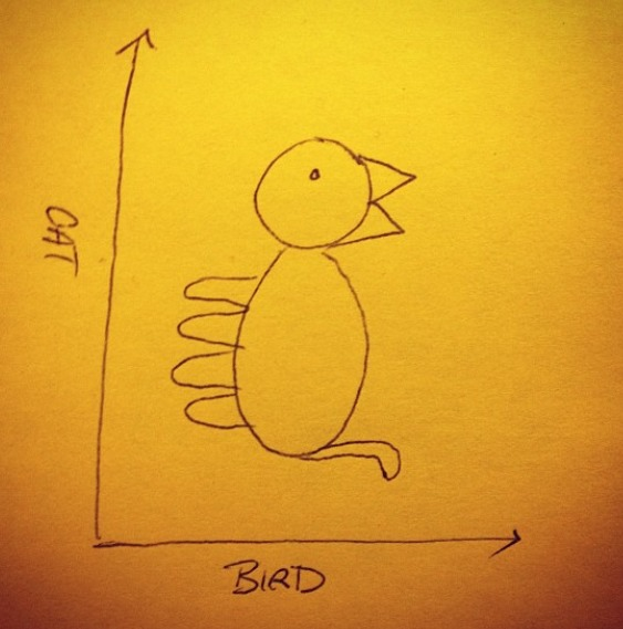 Cat/Bird Graph