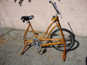 schwinn excercise bike