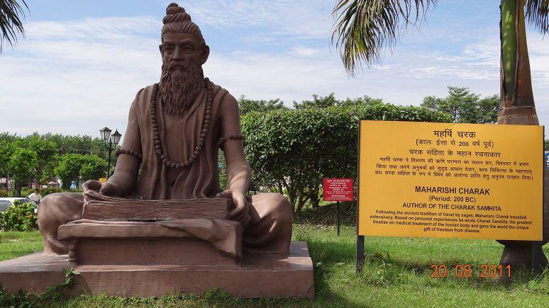 Maharishi Charak Statue