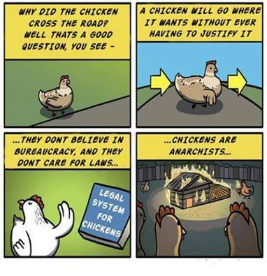 Chickens are Anarchists