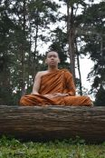 buddhist monk meditating