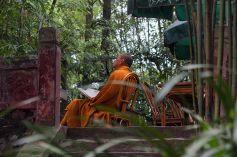 chinese buddhist monk reading