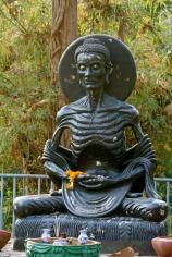 Siddhartha Budda emaciated
