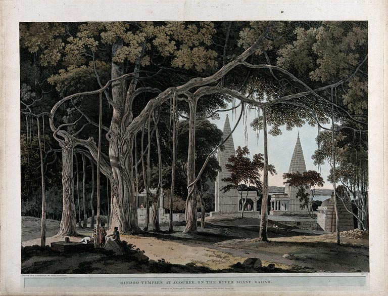 tree with hindu temple