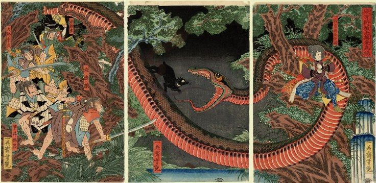 robber king with snake japan