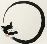 cat zen circle