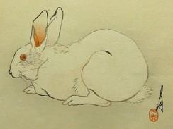 rabbit ogata gekko